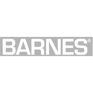 Barnes Pumps Logo
